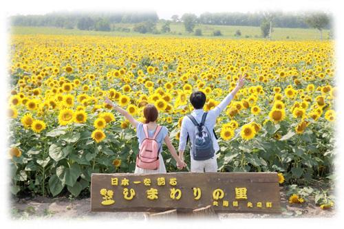 結婚指輪 オーダーメイド 大阪 ひまわり hi150630w961c