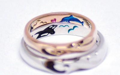 イルカとシャチのカラーの結婚指輪