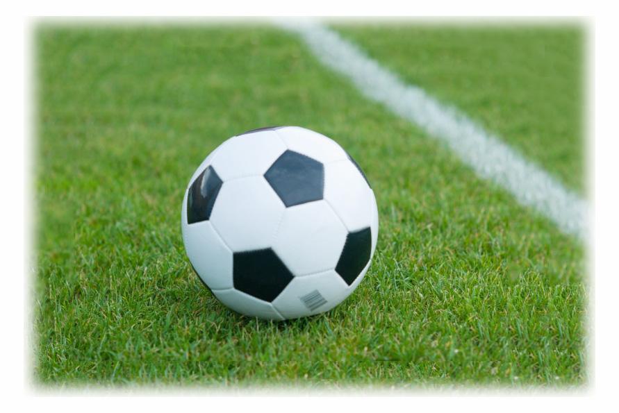 オーダーモチーフ サッカーボール