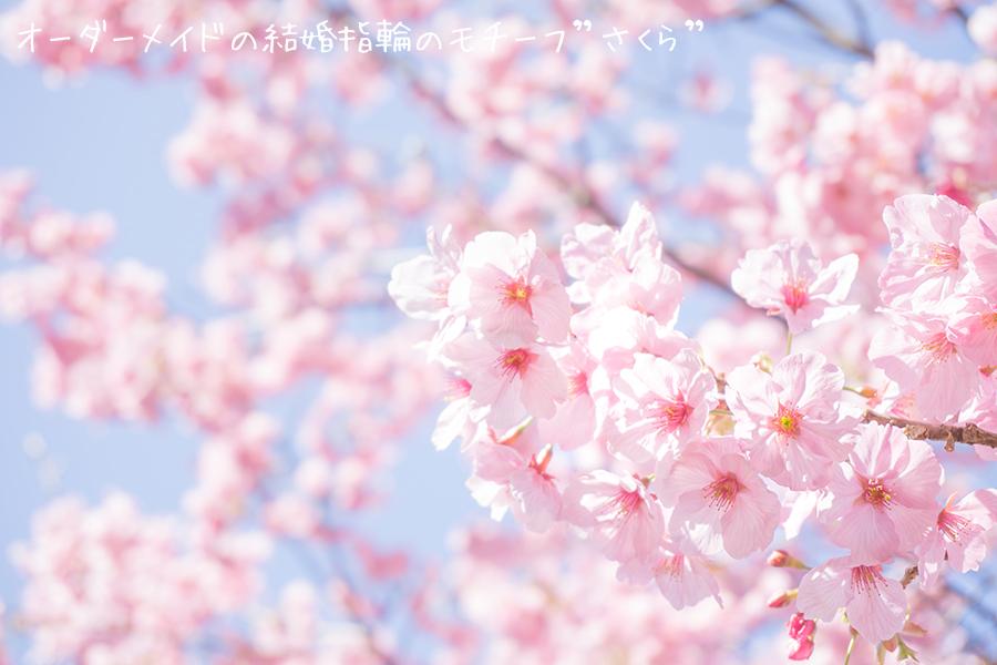 オーダーモチーフ 桜