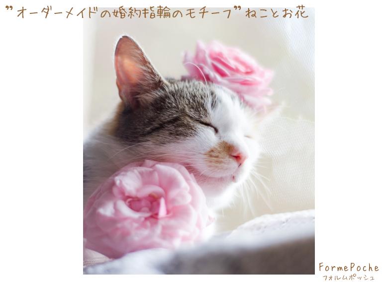 hi180601w1146-5 オーダーメイドの婚約指輪 大阪 猫