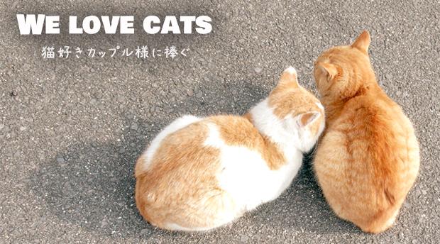 猫のページ2-3