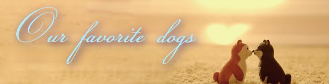 犬好きのカップルに提案する結婚指輪の特集
